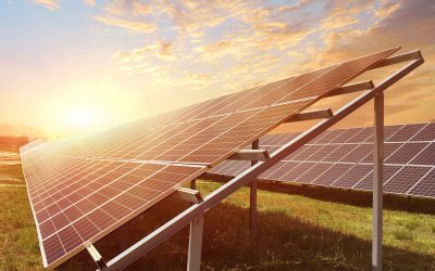 Bangladesh's largest solar power plant connected to national grid